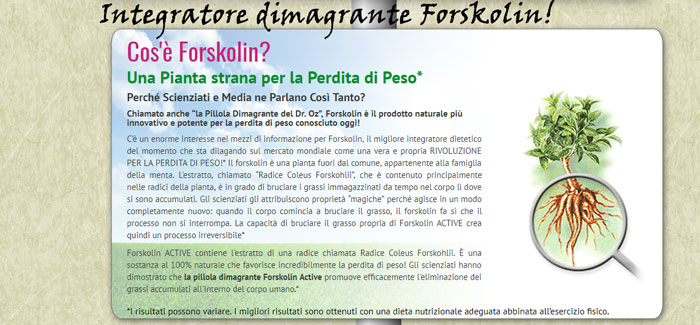 Ingredienti di Forskolin integratore dimagrante