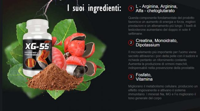 Ingredienti di Xg55 per la massa corporea muscolare