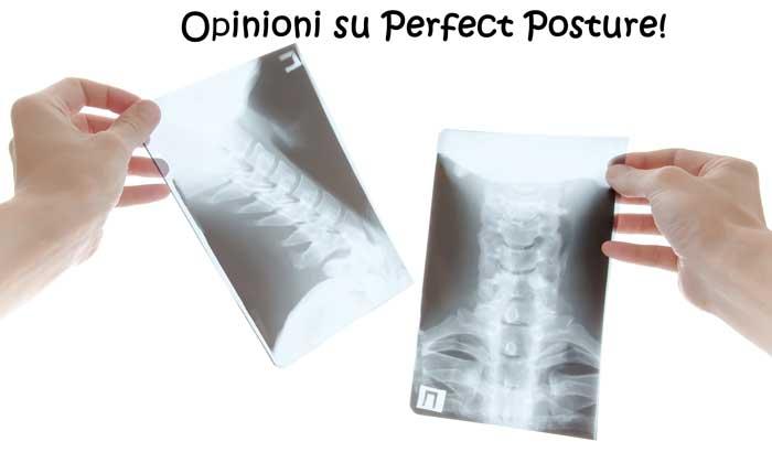 Opinioni del supporto per la schiena Perfect Posture