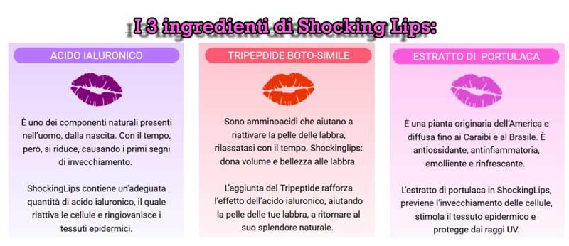 Ingredienti principali di Shocking Lips