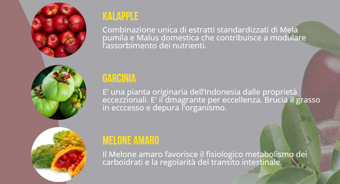 Ingredienti di Kiloforma