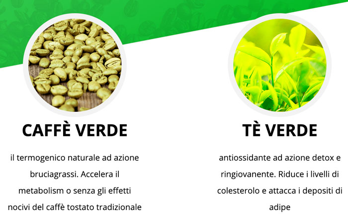 Green Coffee e Green tea Plus ingredienti